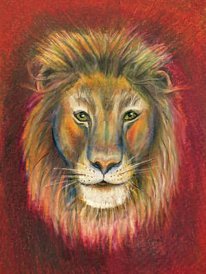 Featured Images Drawing - Leo by Zina Stromberg