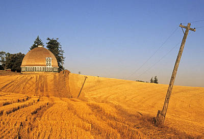 Photograph - Leonard's Round Barn by Doug Davidson