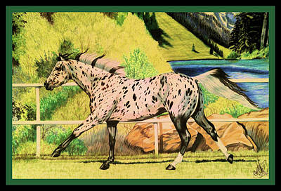 Drawing - Leopard Appaloosa - Dream Horse Series by Cheryl Poland