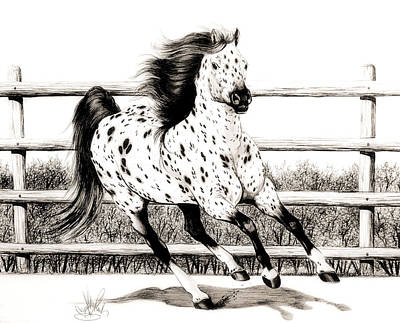 Drawing - Leopard Appaloosa Loping by Cheryl Poland