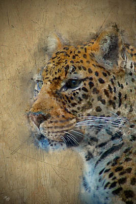 Photograph - Leopard Art by Ron Grafe