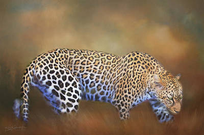 Photograph - Leopard Crawling Through The Grass by Kay Kochenderfer