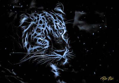Photograph - Leopard In The Darkness.  by Rikk Flohr