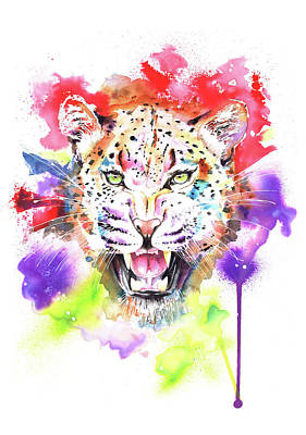 Wild Cat Drawing - Leopard by Isabel Salvador