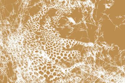 Leopard Art Print by Joe Hamilton