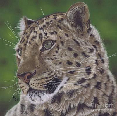 Pastel - Leopard by Karie-Ann Cooper