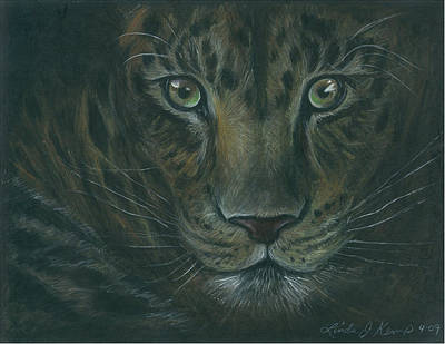 Drawing - Leopard by Linda Nielsen