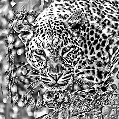 Photograph - Leopard by Lucia Sirna
