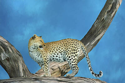 Photograph - Leopard On The Lookout 3.0 by Kay Kochenderfer