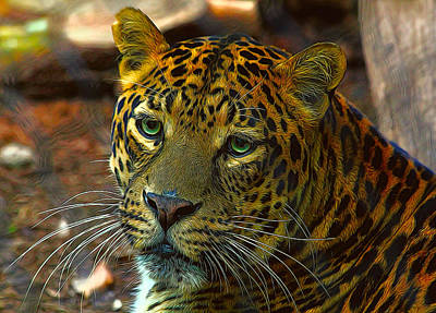 Photograph - Leopard Painted Vibrant Colors by Judy Vincent