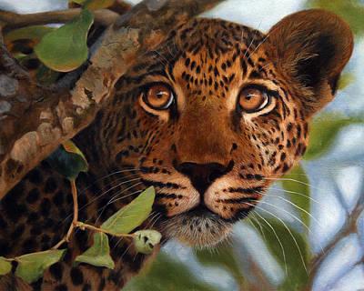 Painting - Leopard Painting / Print - Wildlife Art by Jason Morgan