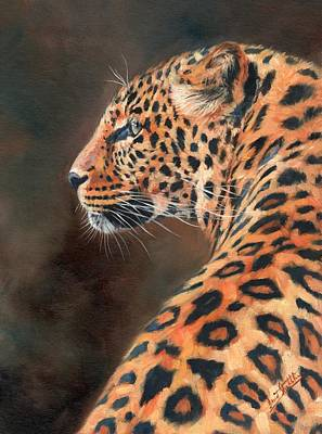 Leopard Profile Print by David Stribbling