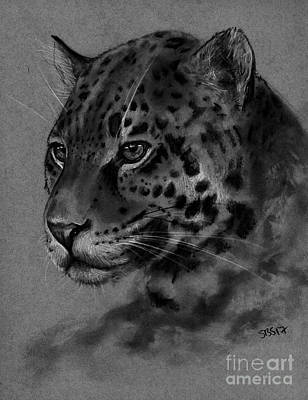 Drawing - Leopard by Samantha Strong