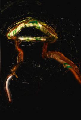 Manipulation Photograph - Leprechaun Shroud by Felicity McNelley