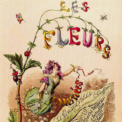 Drawing - Les Fleurs by Bonnie Bruno