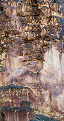 Leslie Gulch Cliff Vertical Art Print by Leland D Howard
