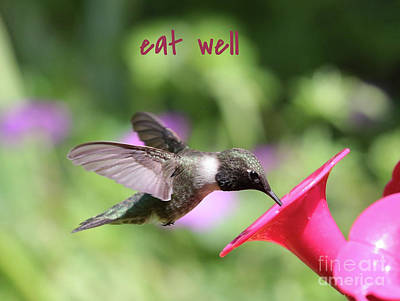 Photograph - Lessons From Nature - Eat Well by Carol Groenen