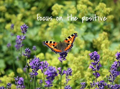 Photograph - Lessons From Nature - Focus On The Positive by Carol Groenen