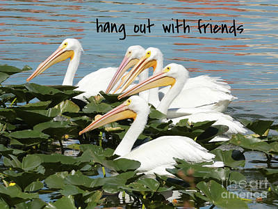 Photograph - Lessons From Nature - Hang Out With Friends by Carol Groenen