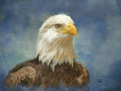 Eagle Painting - Let Freedom Ring by Colleen Taylor