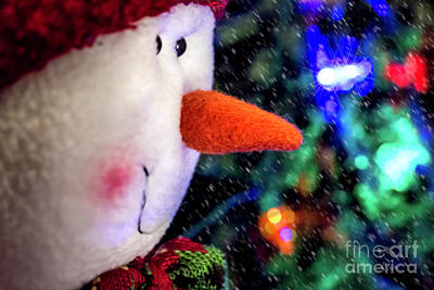 Photograph - Let It Snow by Elijah Knight