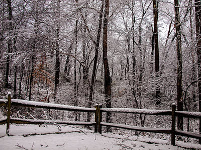 Photograph - Let It Snow by Randy Sylvia