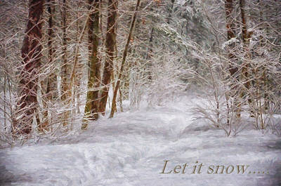 Photograph - Let It Snow by Tricia Marchlik