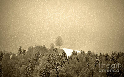 Photograph - Let It Snow - Winter In Switzerland by Susanne Van Hulst
