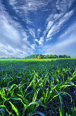 Photograph - Let Me Never Lose Sight by Phil Koch