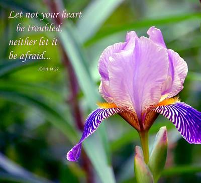 Photograph - Let Not Your Heart Be Troubled by Deena Stoddard