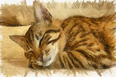 Drawing - Let Sleeping Cats Lie by Tracey Harrington-Simpson