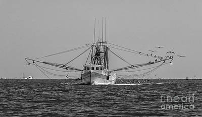 Photograph - Let The Shrimping Season Begin by Dale Powell