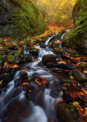 Photograph - Let The Water Fall by Darren White