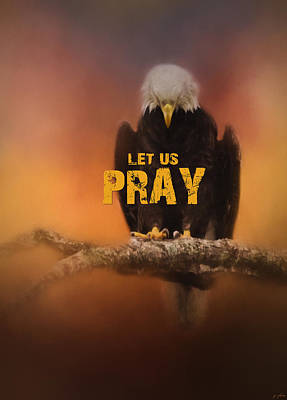 Photograph - Let Us Pray - Bald Eagle Art by Jai Johnson