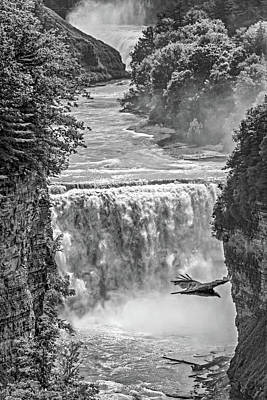 Photograph - Letchworth State Park 4 Bw by Steve Harrington