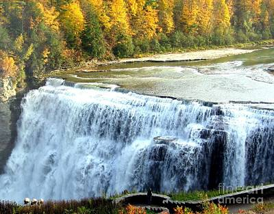 Photograph - Letchworth State Park Middle Falls Autumn by Rose Santuci-Sofranko
