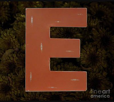 Photograph - Letter E by Steven Parker