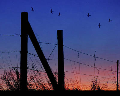 Photograph - Letter N - Nebraska - Sunset by Nikolyn McDonald