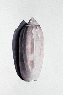Sea Shells Painting - Lettered Olive #1 by Jennifer Kassing-Bradley