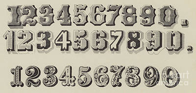 Letters And Numbers Art Print by English School