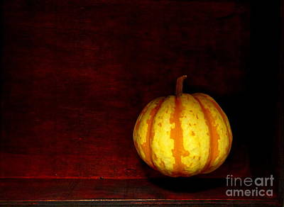 Spice Box Photograph - Levitate Pumpkin - Still Life by Birgit Moldenhauer