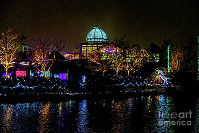 Photograph - Lewis Ginter Night Reflections 5822t by Doug Berry