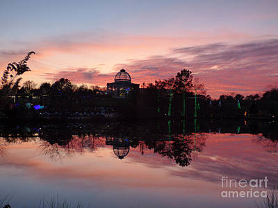 Photograph - Lewis Ginter Sunset by Jean Wright