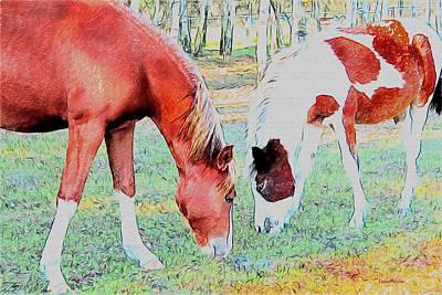 Photograph - Lewitzer Horses 514 by Ericamaxine Price