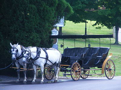 Eddie Armstrong Photograph - Lexington Carriage by Eddie Armstrong