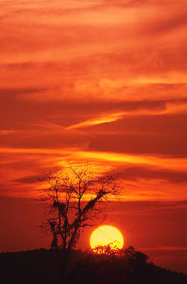Photograph - Lexington Sunset by Bijan Pirnia