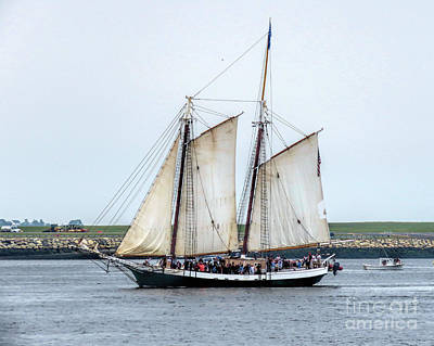 Photograph - Liberty Clipper  by Janice Drew
