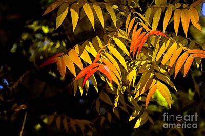 Manipulated Digital Photograph - Library Leaves by Norman Andrus