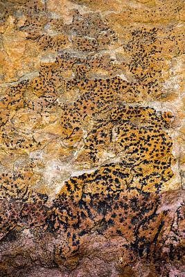 Photograph - Lichen Abstract, Bhimbetka, 2016 by Hitendra SINKAR