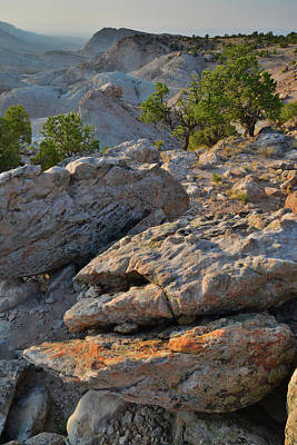 Photograph - Lichen Covered Boulders Above Bang's Canyon by Ray Mathis